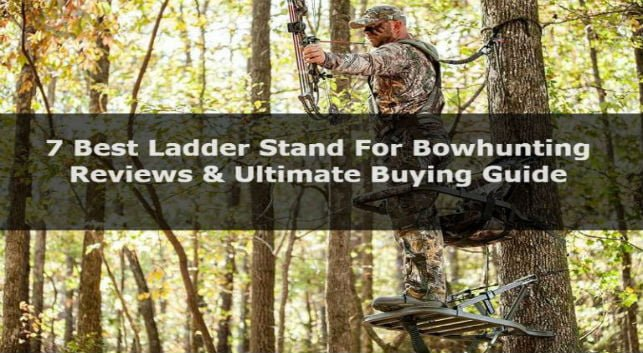 7 Best Ladder Stand For Bowhunting: Reviews & Ultimate Buying Guide
