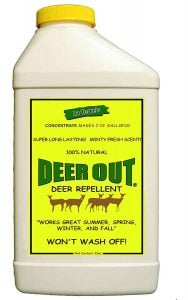 Best Deer Repellent for Gardens