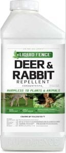 Best Rabbit and Deer Repellent